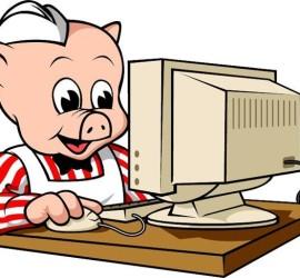 Mr pig at computer